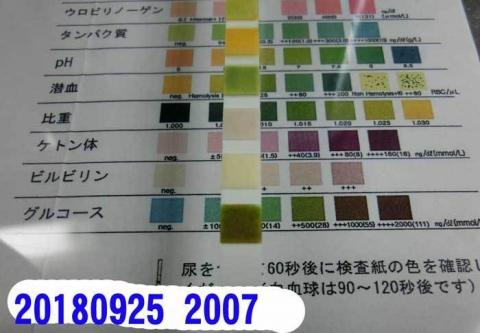 20180925-2007CIMG2880.jpg