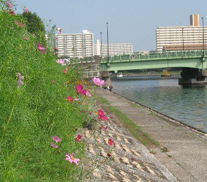 IMG_0101運河