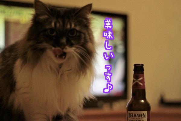 ビール~5