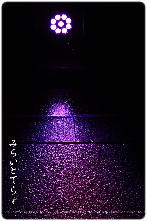 sayomaru18-66.jpg