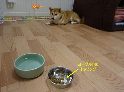 2食欲無いの
