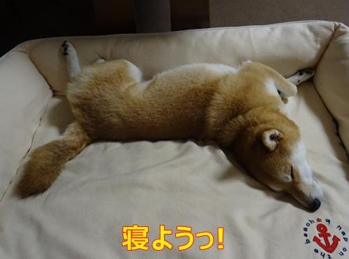3寝苦しい