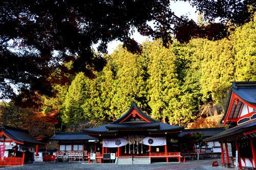 20181111金櫻神社 (1)