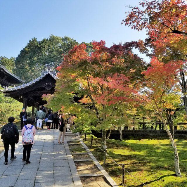 東福寺12