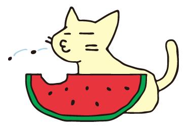 スイカを 食べる ネコ