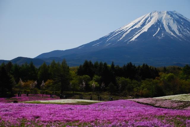 富士山の「5合目」は、山頂まで半分の地点ではないって本当?