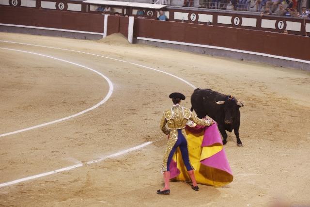 赤い布に突進する闘牛だが、色を識別することができない?