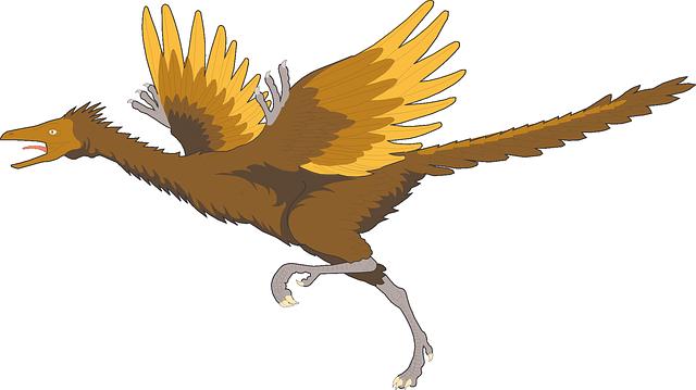 始祖鳥の羽は「ハエ叩き」だった?