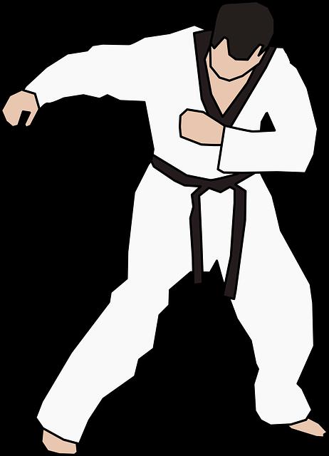 空手と少林寺拳法の違いは?