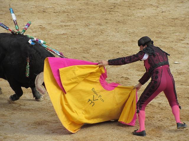 闘牛士の振る赤い布で、牛は本当に興奮する?