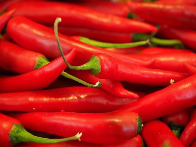 トウガラシの辛さは、肥満防止になる?