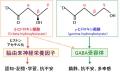βとγのヒドロキシ酪酸の図