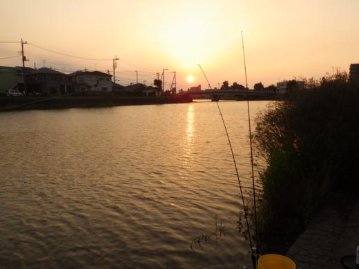 綾瀬川 (17)