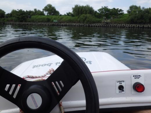 荒川でボート (44)