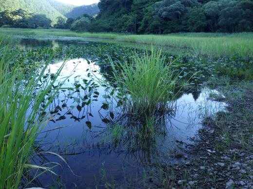 猪苗代湖 (28)
