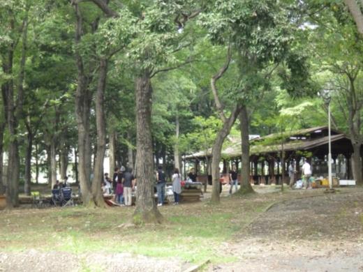 上野沼キャンプ場 (20)