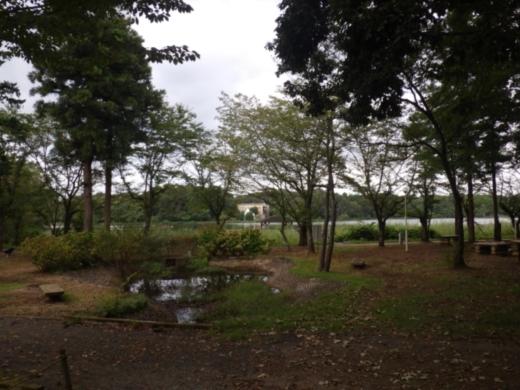 上野沼キャンプ場 (30)