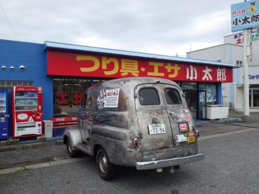 勝浦で磯遊び (9)