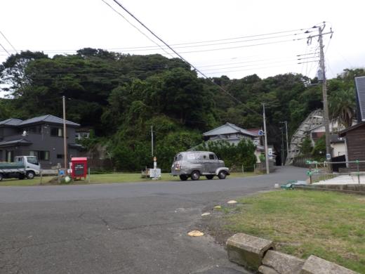 勝浦で磯遊び (16)