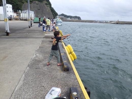 勝浦漁港 (4)