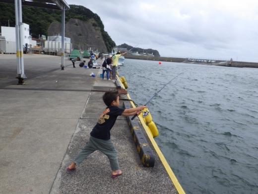 勝浦漁港 (7)