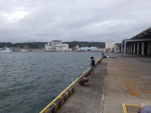 勝浦漁港 (18)