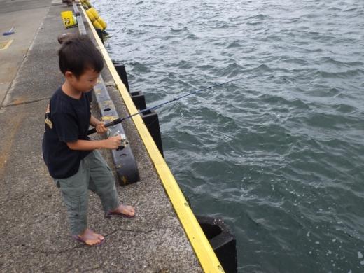 勝浦漁港 (10)