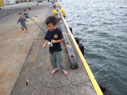勝浦漁港 (11)