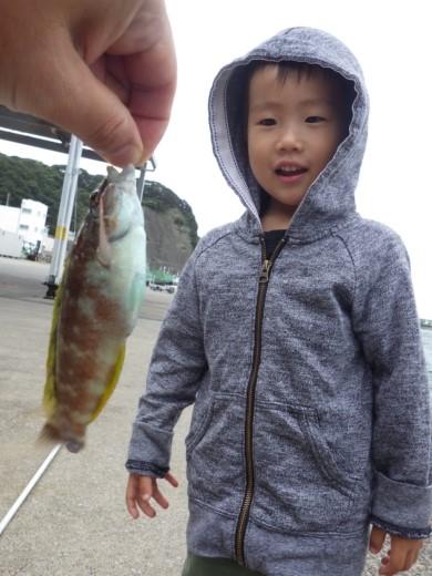 勝浦漁港 (15)