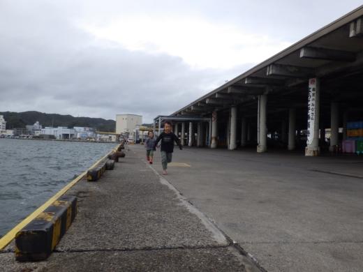 勝浦漁港 (26)