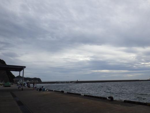 勝浦漁港 (27)