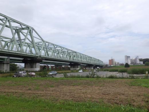 大利根橋で釣り (13)