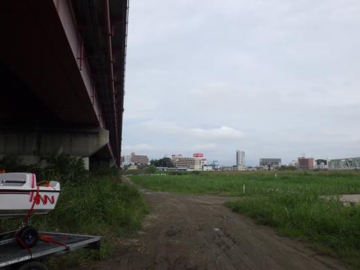 大利根橋で釣り (17)