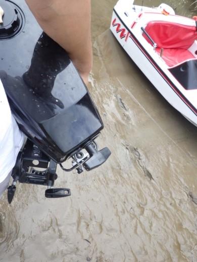 大利根橋で釣り (56)