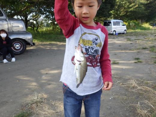 中川の釣り (7)