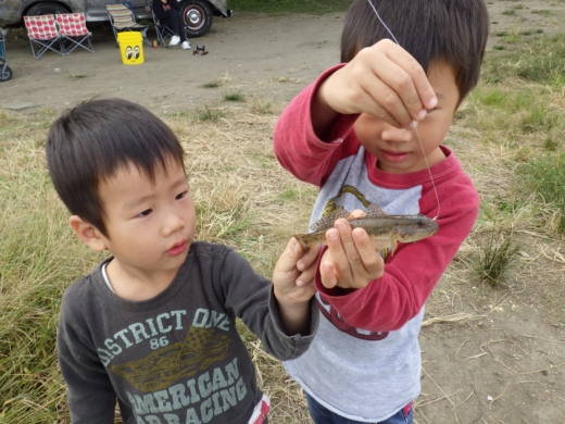 中川の釣り (9)