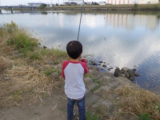 中川の釣り (11)