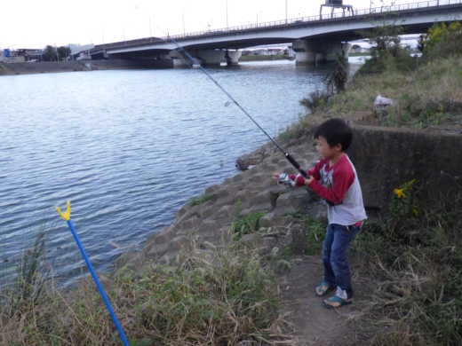 中川の釣り (19)