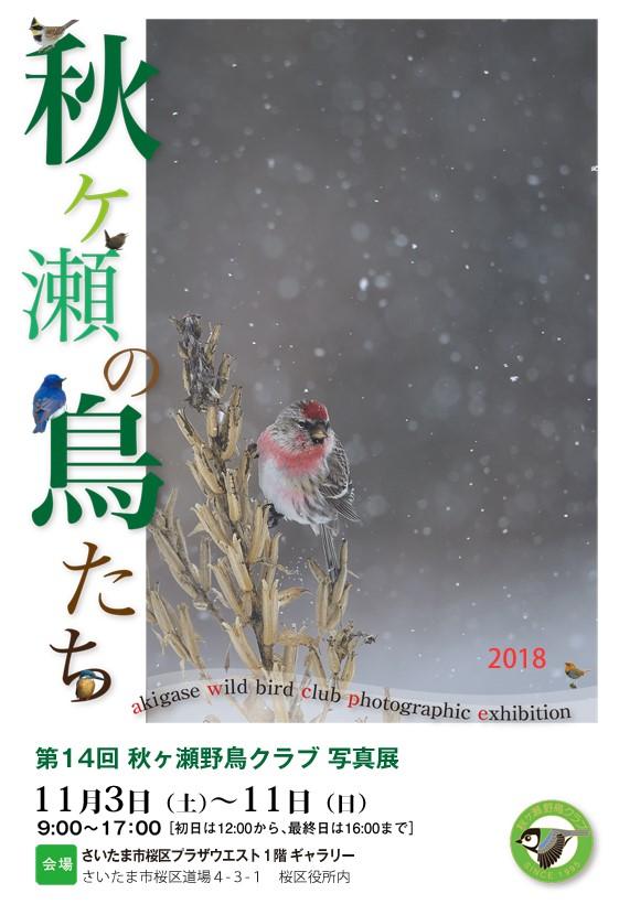 第14回秋ヶ瀬野鳥クラブ写真展案内