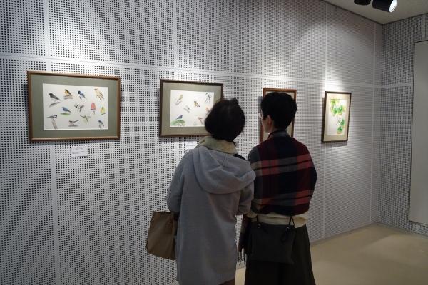 秋ヶ瀬野鳥クラブ写真展20181104-2