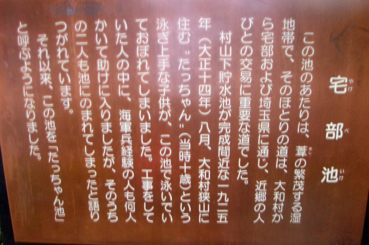 P1120159.jpg