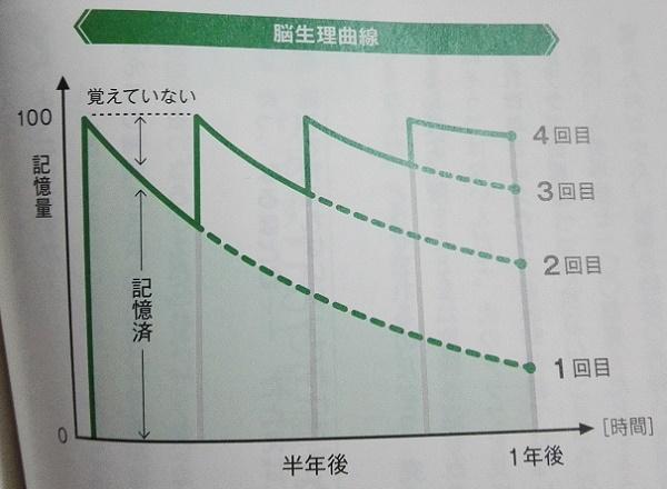 脳生理曲線