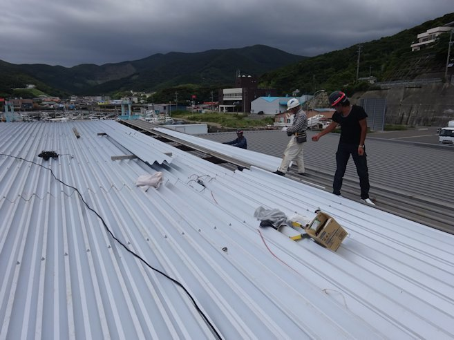 漁協荷捌き所 屋根張替補修中2