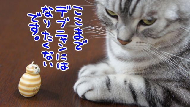201609220034341e8.jpg