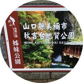 11 日本・秋吉台地質公園
