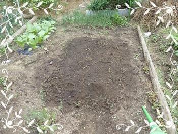 茄子の後の畝