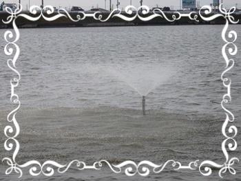天満大池 噴水