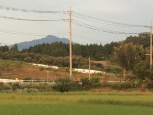 04秋朝 (4)