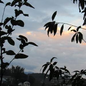 17曇り1 (1)