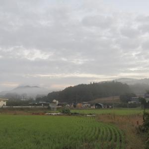 06晩秋 (3)